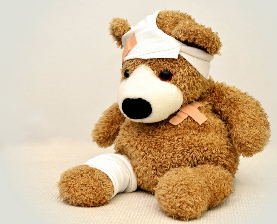 teddy-teddy-bear-association-ill-42230